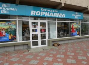 Ropharma vrea afaceri în creștere cu 12% pentru 2012