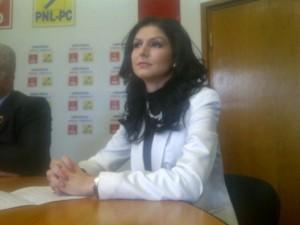 Kituri și consiliere pentru mamele de îngeri la Brașov