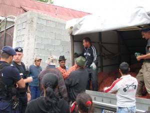 FOTOGALERIE Razie la Apața cu… ajutoare!