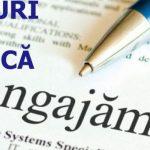 Locuri de muncă la Brașov: contabil și în domeniul HoReCa