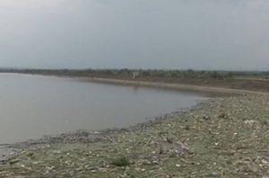 Viitură de gunoaie, pe râul Olt