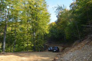 Primăria Brașov selectează proiectanți pentru modernizarea drumurilor forestiere