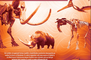 Expoziţie de fosile ale unor mamifere preistorice, la Dino Parc Râșnov