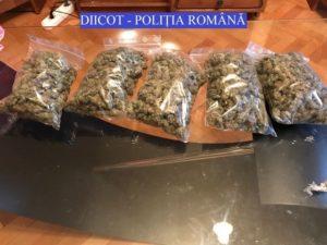 Doi brașoveni, arestați pentru trafic de droguri