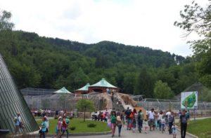 O nouă oportunitate de a conserva natura, la Zoo Brașov, de Ziua Mondială a Faunei Sălbatice