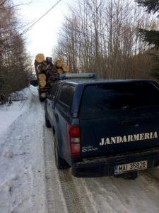 Amenzi de 25.000 de lei date de Garda Forestieră Brașov în doar 5 zile!