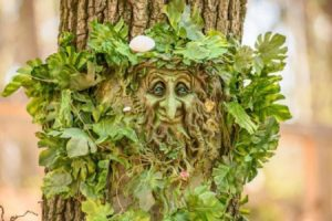 Expoziție inedită: Copaci transformaţi în personaje de basm , la Dino Parc Râșnov (Foto)