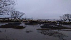 Peste 10 milioane de lei, nota de plată pentru ultimele inundații
