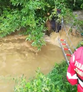 Copil de cinci ani, luat de ape după ce o căruță s-a răsturnat în râul Berivoi (Video)