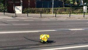 Flori sădite într-o groapă în asfalt, pe strada Carpaților (Foto)
