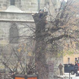 Un copac a luat foc lângă Biserica Neagră