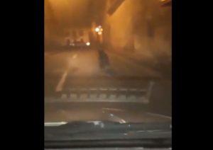 VIDEO Urs filmat azi-noapte, la Râșnov