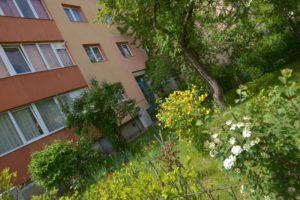 Începe premierea celor mai frumoase grădini din municipiul Brașov (FOTO)