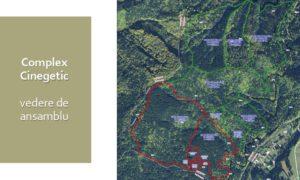 VIDEO Soluție pentru prevenirea apariției urșilor în orașe: complex cinegetic unic în Europa, la Brașov!