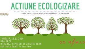 Acțiune de ecologizare în Parcul Național Piatra Craiului