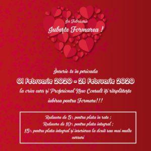 "Profesional New Consult organizeaza in luna Februarie Campania ""Iubeste Formarea"""