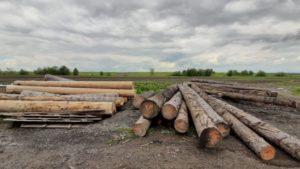 Polițiștii brașoveni au confiscat material lemnos de aproape 25.000 de lei, de la o societate din Șinca Veche