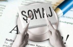 Studiu: România, printre statele UE cu cea mai scăzută rată a şomajului, în octombrie