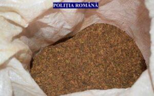 Percheziţii în Brașov la persoane suspectate de contrabandă. 135 de kilograme de tutun mărunţit, confiscate