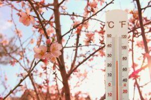 Cum va fi vremea în luna Mai. Prognoza actualizată pentru următoarele patru săptămâni