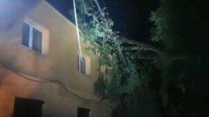 VIDEO Copacii doborâți de vânt au căzut peste o locuință, la Hărman!